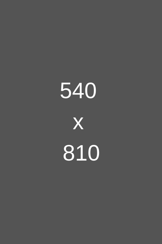 540-x-810.png